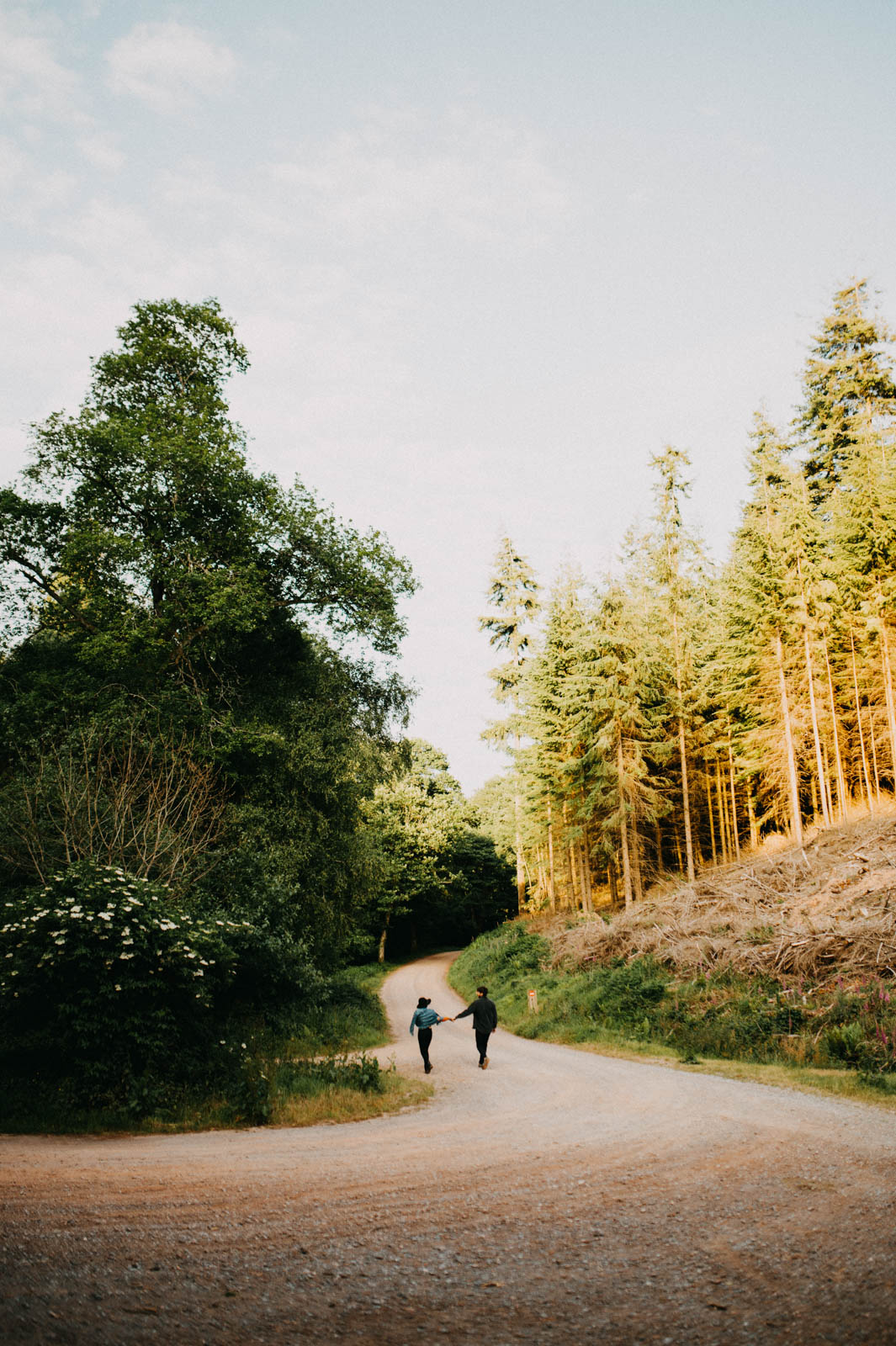 man and woman walking in forrest during sunset